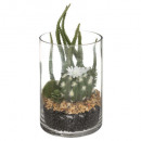 üveg kaktusz terrárium h19.5, 2- szer szortírozott
