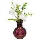 composición de flor gitana, 2- veces surtido , col