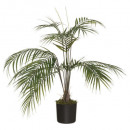 hurtownia Ogrod & Majsterkowanie: premium palm h72, zielony