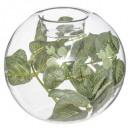 round eucalyptus candle holder glass d12, transpar
