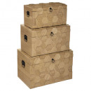 arty wood trunk x3, medium beige