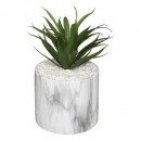 plant pot marble plate h17.5, 2- times assorted ,