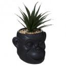 planta de mono de cerámica nr cuba h20, negro
