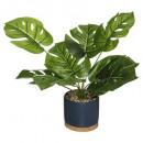 plante pot ceramique bambou assiette h35, 4-fois a