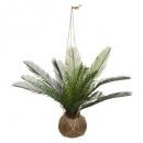 palmier pot coco cuba h50, vert