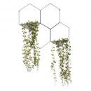 hangende plant hexa x4 Borden 49cm, 2 keer aas