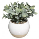 plant pot ceramic plate d11, 2- times assorted ,