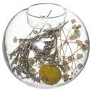 gedroogde bloem glazen kandelaar Borden folk 2-f