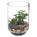 bonsai terrarium h19, átlátszó