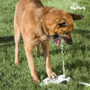 My Pet Ez Wasserfontäne mit Pedal