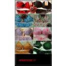 ingrosso Ingrosso Abbigliamento & Accessori: La lingerie Bra -HERBST /WINTERSCHNAEPPCHEN  ...