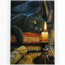 grossiste Magnetique: Witching Hour magnétique Lisa Parker