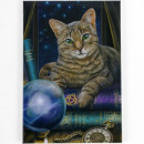 wholesale Magnets: Magnetic soothsayer Cat Lisa Parker