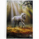 wholesale Magnets: Magnet Unicorn Anne Stokes