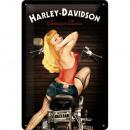 Großhandel Bilder & Rahmen: BlechschildHarley - Davidson20 x 30cm
