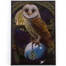grossiste Cadeaux et papeterie:Owl Magnet Lisa Parker