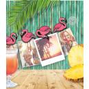 groothandel Foto's & lijsten: Foto canvas - Flamingo's
