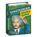 mayorista Cuadernos y blocs: Sabiduría libreta de Einstein