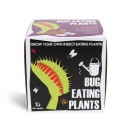 grossiste Cadeaux et papeterie: Semer et cultiver  des plantes carnivores - Box