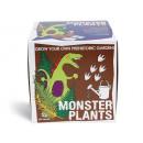 grossiste Cadeaux et papeterie: Semer et croître, les plantes Monster - Coffret ca