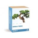 wholesale Giftware: Grow It? Bonsai trees, gift box
