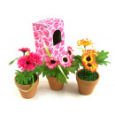 wholesale Artificial Flowers: Artificial flower in a pot 16 cm