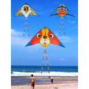 wholesale Toys:Kite XXXL 150x75cm