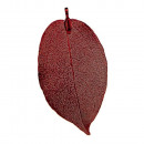 Pendant leaf, nature / copper, red