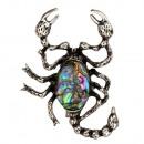 Hanger / broche Scorpion, Abalone