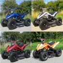 E-QUAD 800W Racer in 9 verschillende kleuren