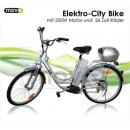 E-City Bike 250W 26 inch