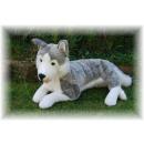 groothandel Speelgoed: Achterover leunen Husky, 60 cm