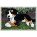 wholesale Other: Reclining Bernese Mountain Dog, 60 cm