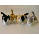 4x assorted  Shorthair cats, 18 cm