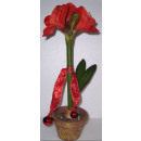 wholesale Artificial Flowers:Amaryllis in pot