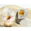 grossiste Boîtes et presentoirs bijoux: Morceaux  d'ambre avec inclusions