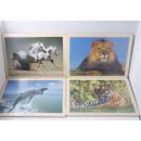 wholesale Puzzle: Holzpuzzle  Wildlife 24teilg 30x 22cm