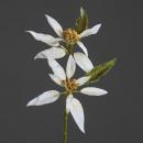 grossiste Fleurs artificielles:Noël Poinsettia x2