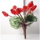 wholesale Plants & Pots: Cyclamen red flowers 8 4 Buds