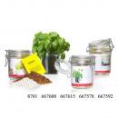wholesale Garden Equipment: Kitchen greenhouse chives