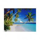 wholesale Puzzle: Puzzle  beach of  dreams  1000 parts of 68 x 48 cm