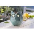 wholesale Garden Decoration & Illumination: Ceramic owl with Citronellawachs