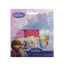 ingrosso Prodotti con Licenza (Licensing): Biancheria intima Frozen 3 Confezione 2-8 anni