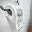 wholesale Toiletries:Toilet paper dollar XL