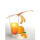 grossiste Articles de fête: Agitateurs pour boissons libellules