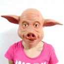 mask pig