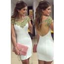 skirts & dresses-dresses