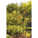 wholesale Plants & Pots:pink Column