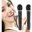 Großhandel Musikinstrumente:Kabelloses Karaoke-Set