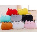 groothandel Kussens & Dekbedden: Pushen CAT Kussen  CAT mascotte knuffel BIG MIX
